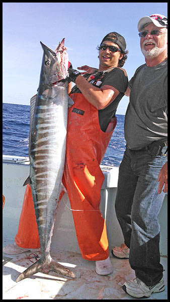 mate displaying a citation wahoo